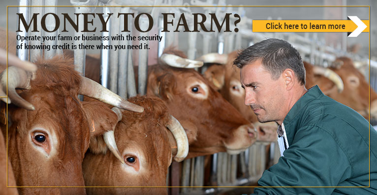Money to farm? Operate your farm or business with the security of knowing credit is there when you need it.